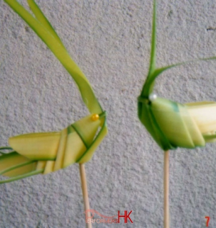 2 grasshoppers made from leafy grass
