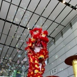 Our red lion dancing in bubbles.