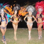 Samba costume mixed colors
