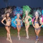 Samba costume multi color costumes