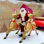 Santa Wayne with reindeers and sleight