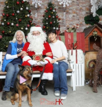 santa and dog in hong kong