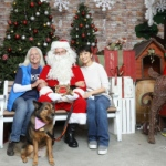 Hong Kong dog rescue with wiskers and paws in Hong Kong photo with santa day,