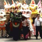 Lions in lion dances come in different colours and have big, bright eyes for good fortune.